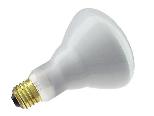 Philips-248872-Soft-White-65-Watt-BR30-Indoor-Flood-Light-Bulb