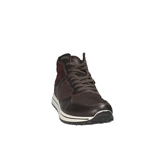 Sneakers IGI 8744 amp;CO Uomo Marrone RgwfSgUq
