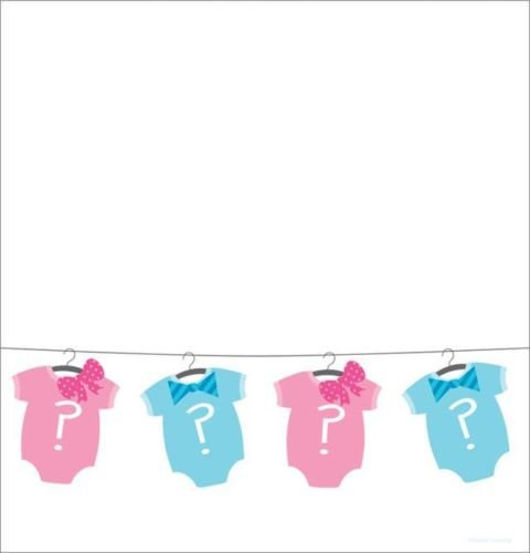 Gender Reveal Baby Shower - Bow or Bowtie Plastic -