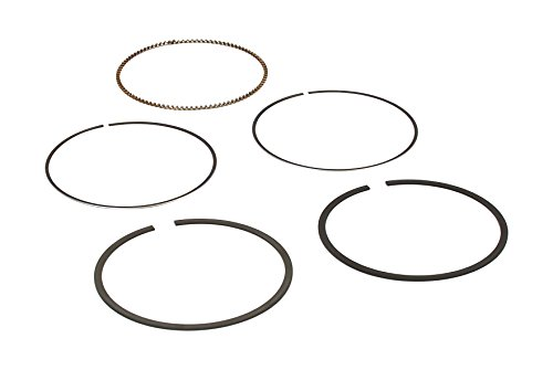 Briggs and Stratton 792306 Piston Ring Set Lawn Mower Replacement Parts ()