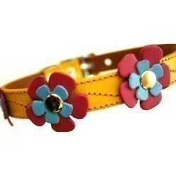 The Cool Puppy Leather Dog Collar – Yellow with Blue and Hot Pink Flowers Medium (10-12 inches), My Pet Supplies