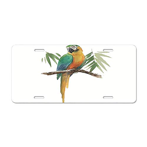 (LLgLOOhoOPPPJDh Watercolor Parrot on Wooden Branches with Bamboo Leaves License Plate Cover Aluminum Car Tag Cover License Tag Holder License Plate Frame for US Vehicles Standard)