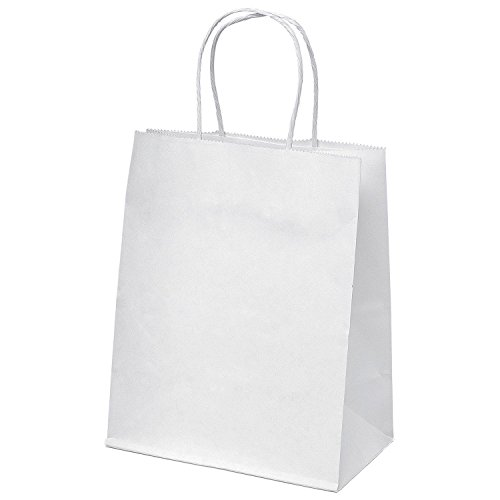 """GSSUSA Halulu 25 Pcs 10""""x5""""x13"""" Kraft White Paper Handle Shopping Gift Merchandise Carry Retail Bags by GSSUSA"""