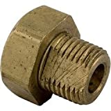 Pentair Replacement Bushing 3/4 in. hex x 7/8