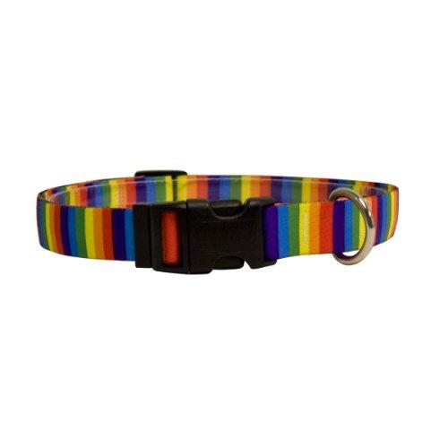 Yellow Dog Design Rainbow Stripes Dog Collar, Medium-1
