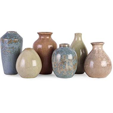 IMAX 3762-6 Mini Vases, Set of 6