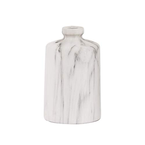 petit Pichet simple nordique en porcelaine pour vase à fleurs pour fleurs sèches, orneHommests de salon accessoires pour la maison Windowsill,conception à bouche étroite 2 tailles en option 21cm   26.5cm Blanc