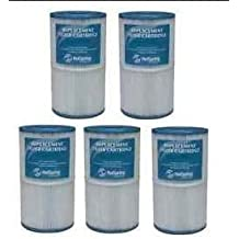 Grandee Hot Spring Filter 5 pk (Original Factory Filter) 71825