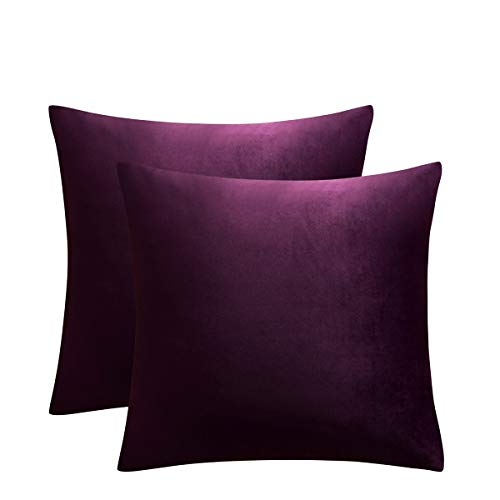 JUSPURBET Eggplant Purple Throw Pillow Covers 16x16 Inches,Pack of 2 Velvet Pillow Covers,Decorative Super Soft Throw Pillow Cases for Sofa Couch Bed