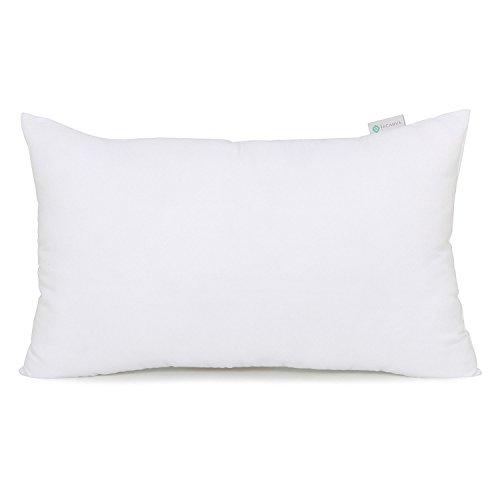 12x24 lumbar pillow insert - 1