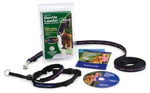 Gentle Leader Deluxe Head Collar and Leash, Large, Baubles/Deep Purple, My Pet Supplies