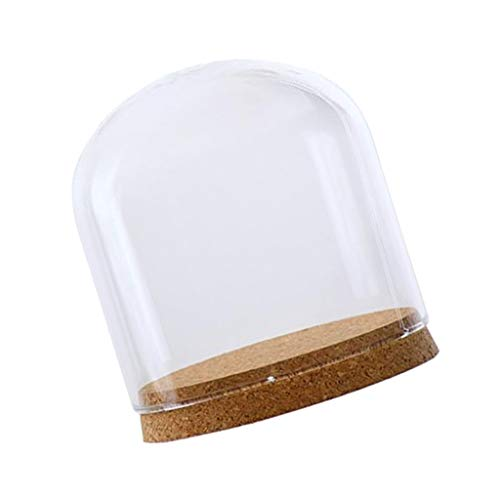 - LOVIVER Regular Clear Glass Cloche Dome Cover Landscape Terrarium Container with Wood Base Dia. 12cm - S