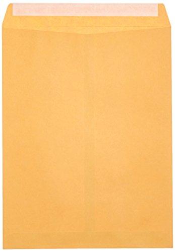 AmazonBasics Catalog Envelopes, Peel & Seal, 10 x 13 Inch, Brown Kraft, 250-Pack Photo #2