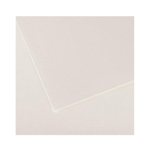 Canson Artist Series Montval Watercolor Paper, Cold Press, 140 Pound, 48 Inch x 5 Yard Roll by Canson
