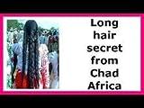 Chebe, Shebe Powder, Chebe Powder, Chebe Mix From Chad – Strengthens Hair, Reduces Breakage (200)