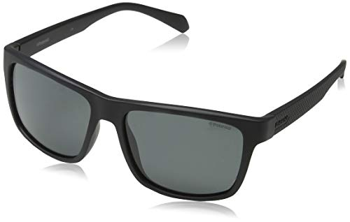 Polaroid Sonnenbrille (PLD 2058/S)