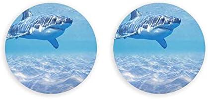 Abridores de botellas redondos de tiburón animal marino océano / imanes de nevera sacacorchos de acero inoxidable pegatina magnética 2 piezas