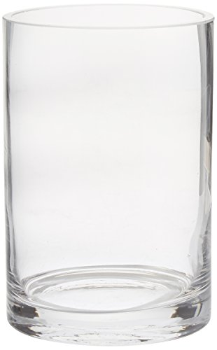CYS Glass Cylinder Vase. H-6