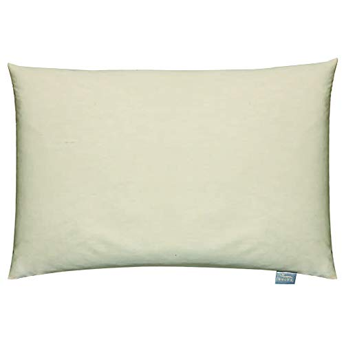 Bucky Large Buckwheat Pillow, Bed