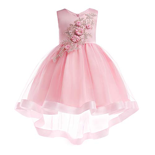 Girls Wedding Party Birthday Pageant Toddler Princess Formal Dresses Lace Bridesmaid Dress (2-3 Years, 2638Pink) ()