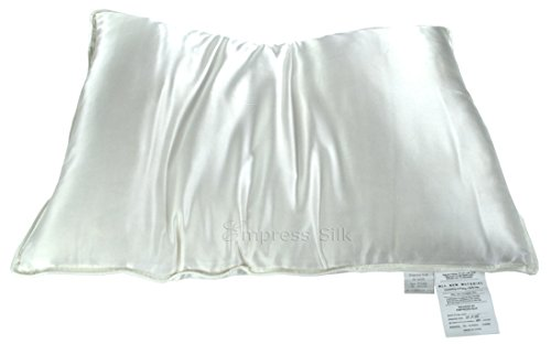 Silk filled Pillow Silk Charmeuse Cover - -