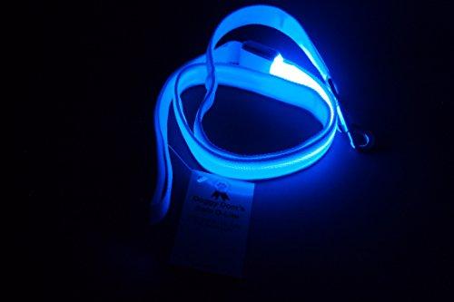 """Doggy Dom's Safe D-Lite 'LED Light Dog Leash' (Blue, Large (1"""" wide))"""