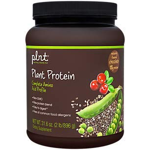 plnt Chocolate Plant Protein Powder with Complete Amino Acid Profile Raw Protein Blend, Easy to Digest Provides Energy, 19g of Protein Per Serving 2 Pound Powder