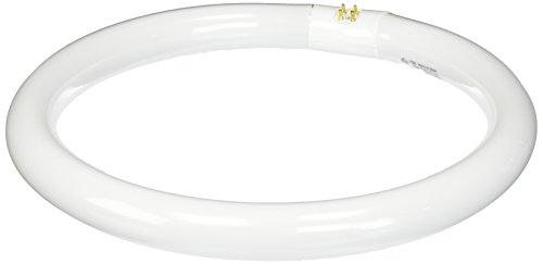 Satco S6504 6500K 32-Watt 4 Pin T9 Circline Lamp, Daylight (Satco Circline Bulbs)