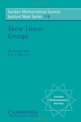 Skew Linear Groups (London Mathematical Society Lecture Note Series)
