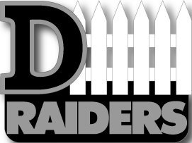 (aminco Oakland Raiders D-Fence Pin )