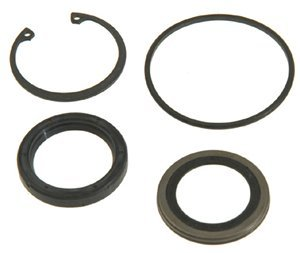 ACDelco 36-349730 Professional Steering Gear Pitman Shaft Seal Kit with Bushing, Seals, and Snap Ring (Shaft Pitman)