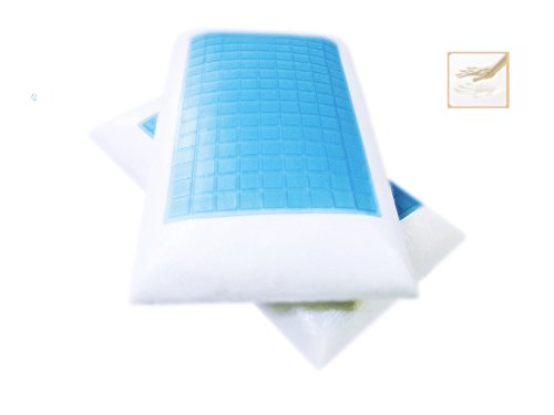 2 Pack Standard / Queen Solid Memory foam Bed Pillow with Cooling Blue Gel Top Surface + White Cover Cases