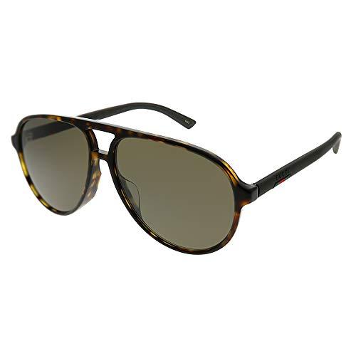Sunglasses Gucci GG 0423 SA- 002 HAVANA/BROWN ()