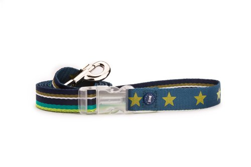 Mascot Multi Stripe Leash Blue Multi with Star Printed on Reverse, 3/4