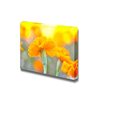 Crafted to Perfection, Elegant Print, Close Up of Beautiful Yellow Cosmos Flower Wall Decor