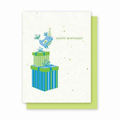 Grow-a-Note Plantable Wildflowers Greeting Cards, Birthday Bird, Package of 4 ()