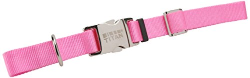 Coastal Pet Products DCP6190126PKB Adjustable Strap with Metal Buckle for Dogs, 1-Inch, Bright Pink