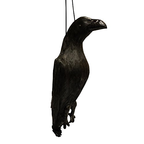 VisualScare Feather Scare Crow Repellent