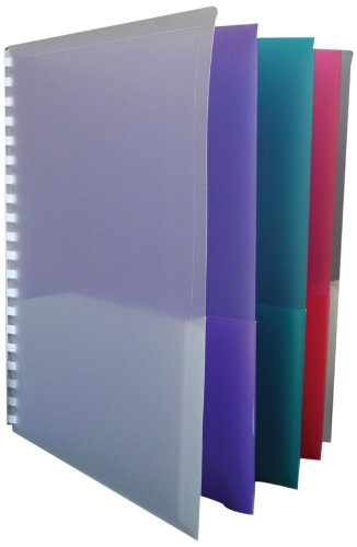School Smart 081928 Project Organizer Polypropylene