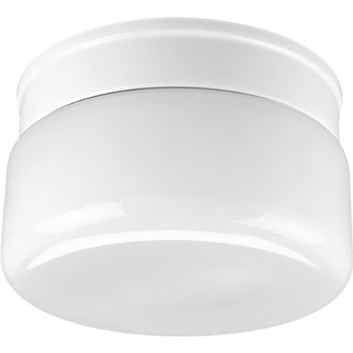 Airpro White 2 Light - Progress Lighting P3518-30 White Glass with Snap-In Fitter Globe, White