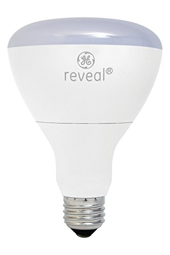 Reveal Led Flood Light