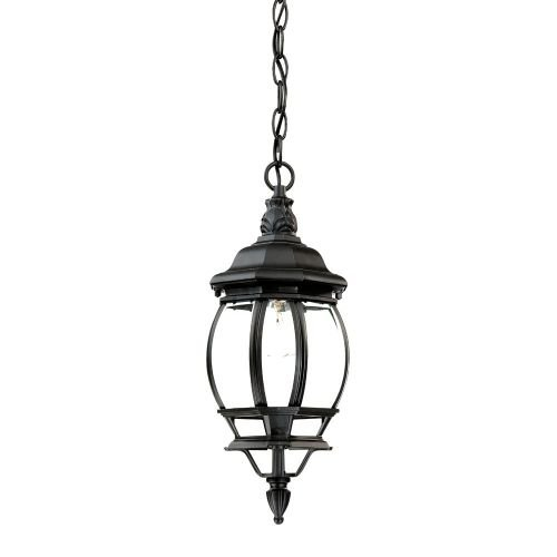 Acclaim 5056BK Chateau Collection 1-Light Outdoor Light Fixture Hanging Lantern, Matte (Collection Outdoor Hanging Lamp)