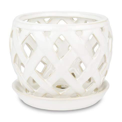 Pennington Lattice Design Pot and Saucer Set for Orchids 6-inch (Bone White)