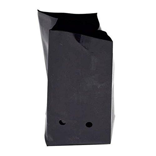 Vasi Neri In Plastica.Vasi In Plastica Neri 11 5l Tipo Pandora Amazon It Giardino E