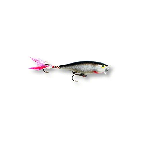 Rapala Skitter Pop 09 Fishing lure, 3.5-Inch, Silver