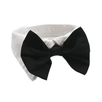 Formal Black Dog Bow Tie (XXL: Neck 23-26