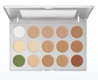 Amazon.com : Kryolan 9015 Ultra Foundation Makeup Palette- 15 Colors (Universal) : Beauty