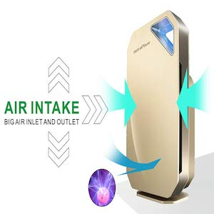 Green Air Encore HEPA and Odor Fighting Filter Air Purifier with IonCluster Technology