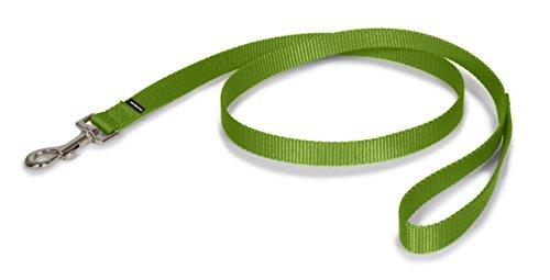 PetSafe Leash, 3/4 x 4, Medium, Apple Green