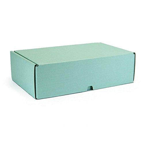 10 Stück VarioColors Naturpak Aufbewahrungsboxen A5 mint grün Geschenkverpackung Versandschachtel 230x170x75mm
